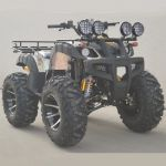 Quad 250 à 300 cc - 4 temps - 95 Km/h - QUAD2504 (Lot 5 pcs)