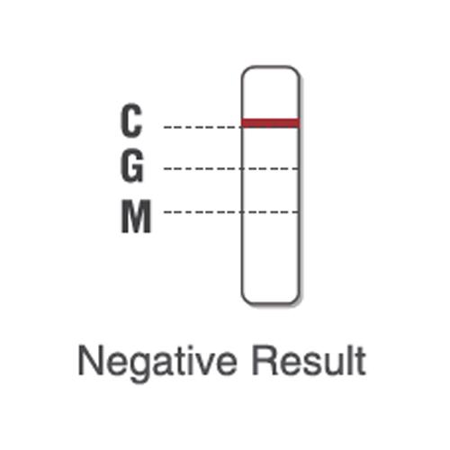 Test rapide covid 19 CE pic11