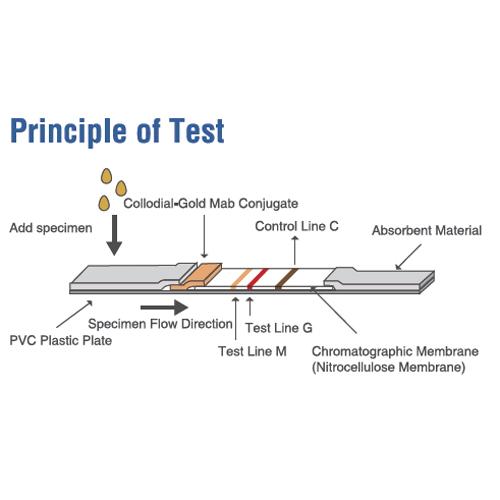 Test rapide covid 19 CE pic6