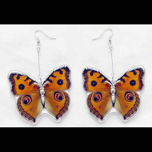boucles oreilles animaux reels BE1