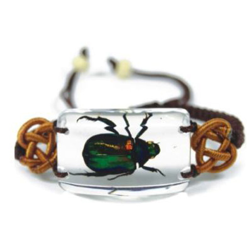 bracelet insecte reel SL15