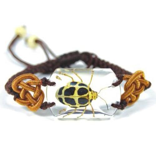 bracelet insecte reel SL16