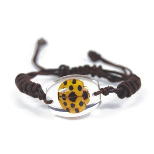 bracelet insecte reel SL78