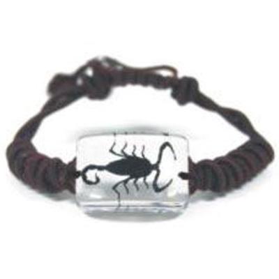bracelet insecte reel SL79