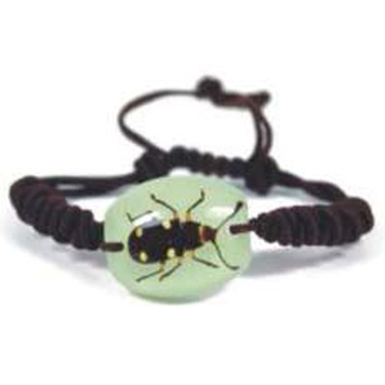 bracelet insecte reel YL78
