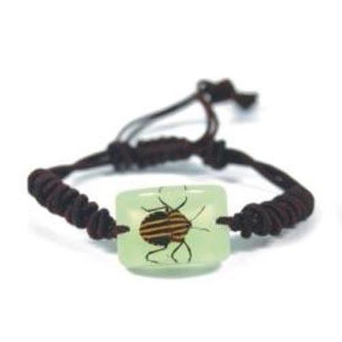 bracelet insecte reel YL79