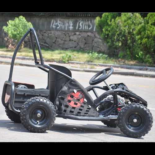 buggy junior 1000W BUGGY1 pic3
