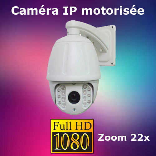 camera dome IP FULL HD CAMIPT222