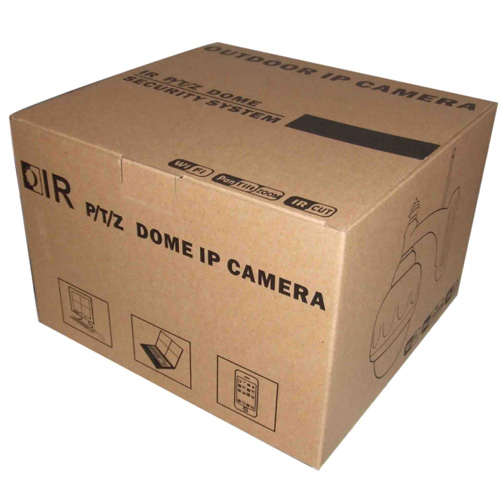 camera ip exterieur HD720P pic2