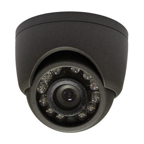 camera surveillance DVI10