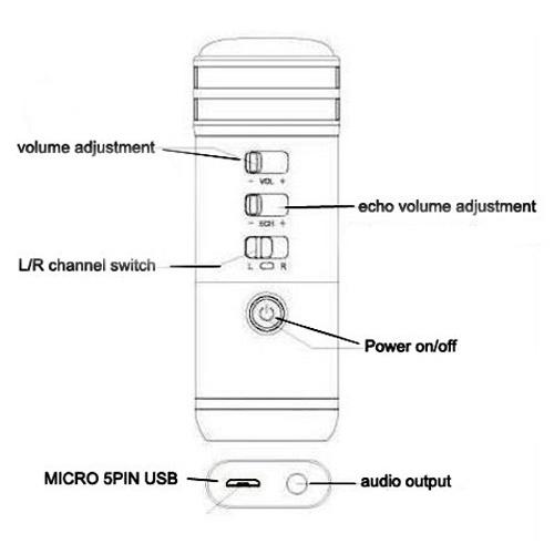 micro pour karaok pic4