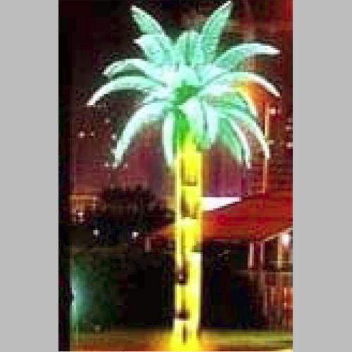 palmier led GNPM803