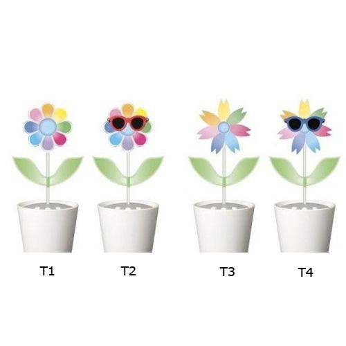plante danssante pic3