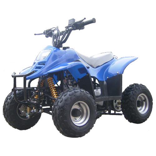 quad 110cc QUAD1105 pic2