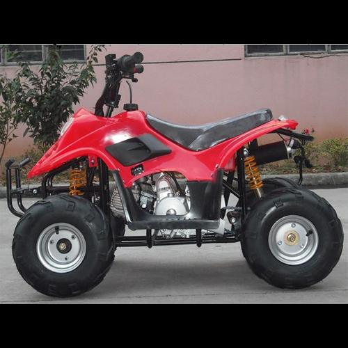 quad 110cc QUAD1105 pic3