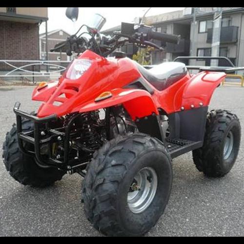 quad 110cc QUAD1105 pic5