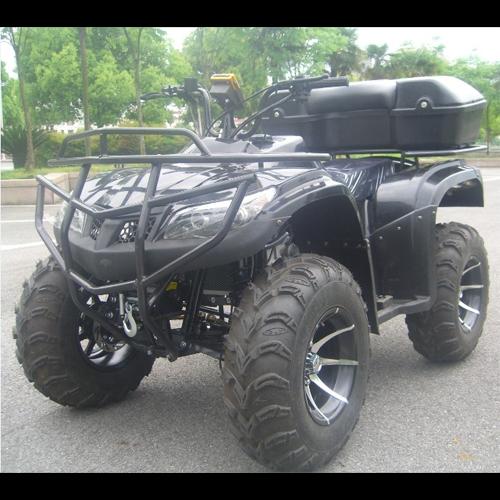 quad 250cc QUAD2501 pic2