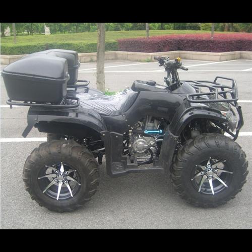 quad 250cc QUAD2501 pic4