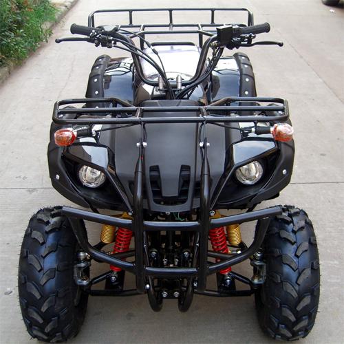 quad 250cc QUAD2502 pic2