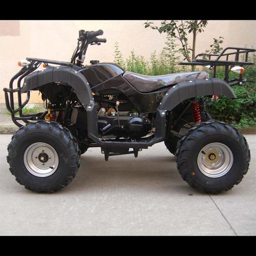 quad 250cc QUAD2502 pic3