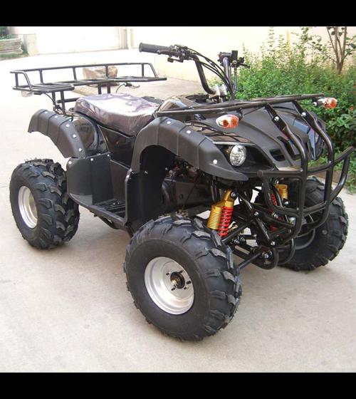 quad 250cc QUAD2502 pic4