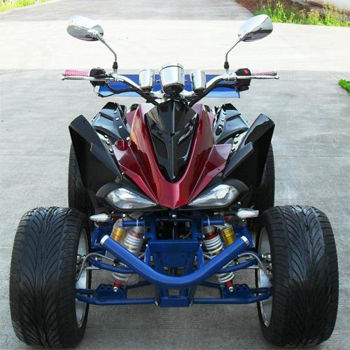 quad 250cc QUAD25023 pic2