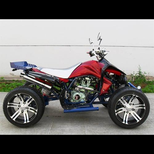quad 250cc QUAD25023 pic3