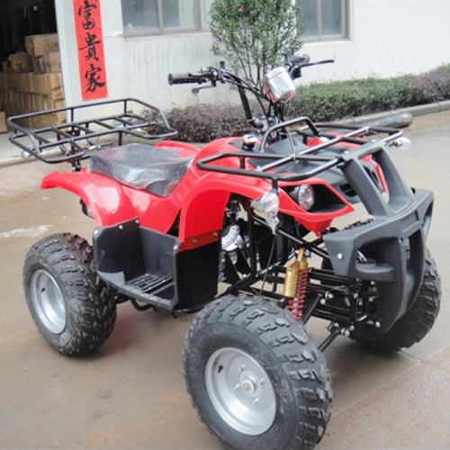 quad 250 cc 4 temps 65 km h quadatv250hm sur grossiste chinois import. Black Bedroom Furniture Sets. Home Design Ideas