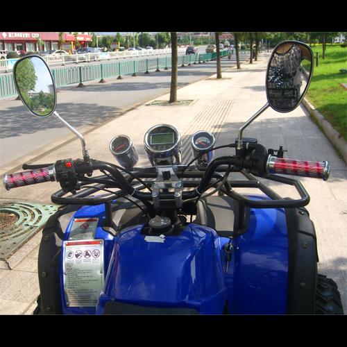 quand 250cc QUAD2503 pic5