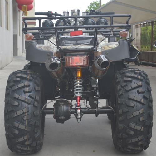 quand 250cc QUAD2504 pic5