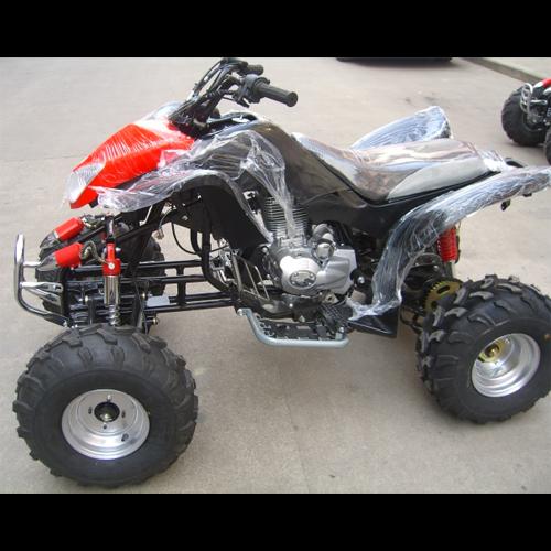 quand 250cc QUAD2506 pic2
