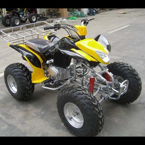 quand 250cc QUAD2506 pic3
