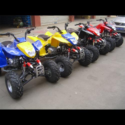 quand 250cc QUAD2506 pic5