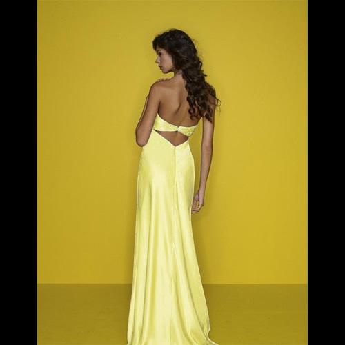 robe de soiree ED40 pic2