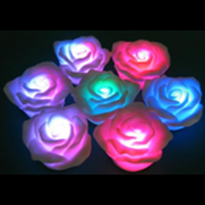 rose led multicolore SG060