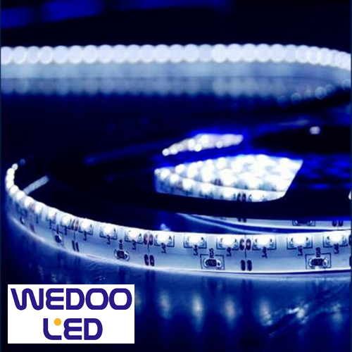ruban led eclairage lateral 120 leds m BTF33512IP20