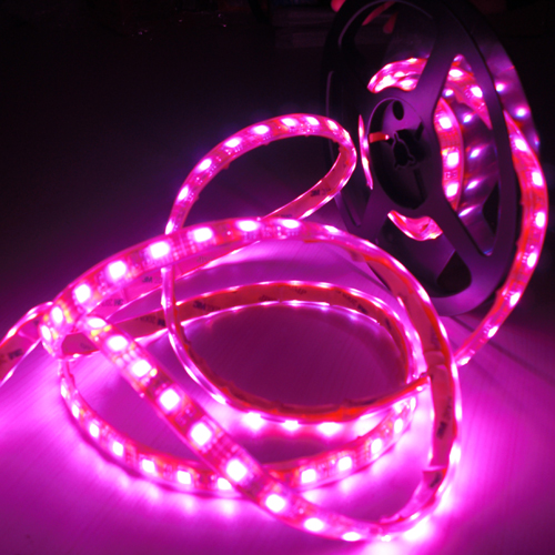strip led rgb smd 5050 pic5